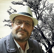 Vicente García Andrés